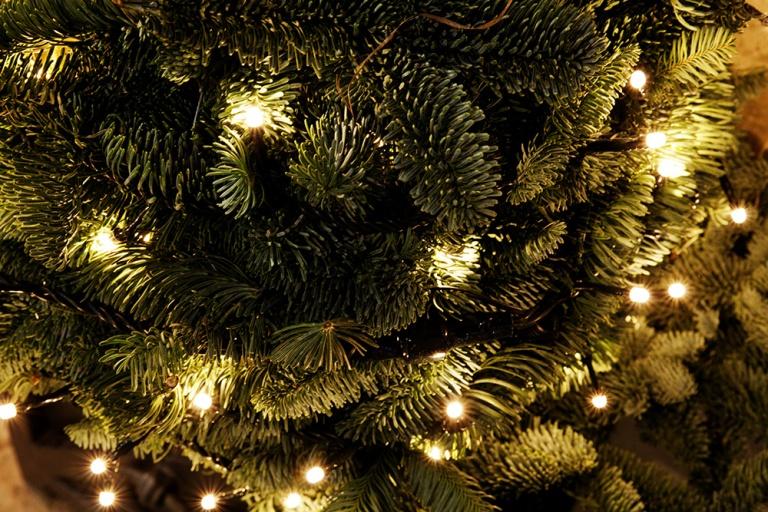 Brescia Natale (7)