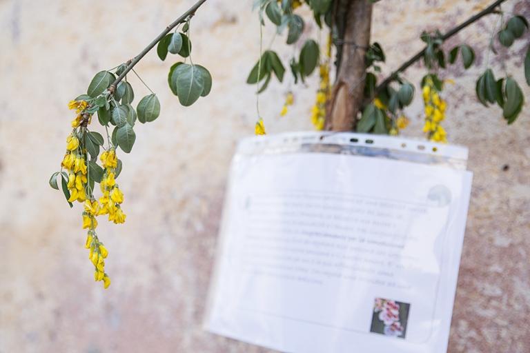 Laura Gatta Marmentino - Festa di primavera (8)